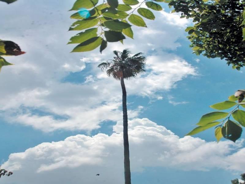 محکمہ موسمیات نے آج بھی ملک کے بیشتر حصوں میں موسم گرم اور خشک رہنے کی پیش گوئی کی ہے۔