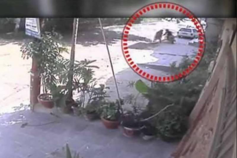 کراچی میں چاقو بردار کا ایک اور حملہ، خاتون زخمی