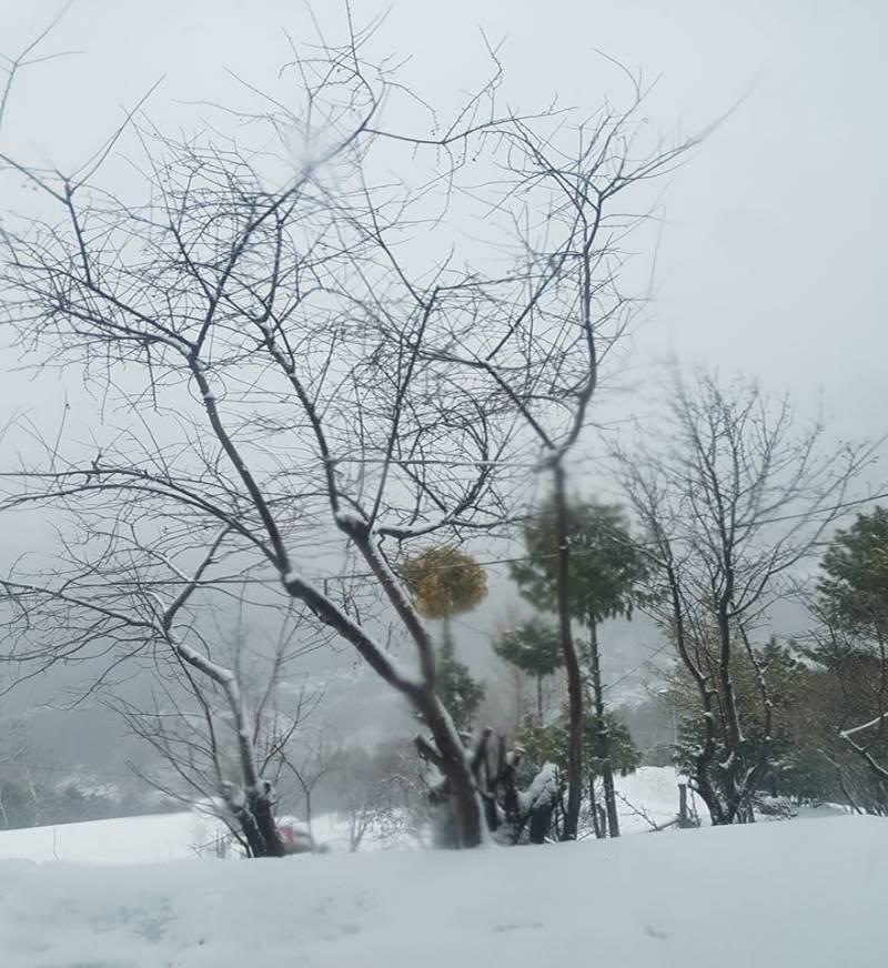 ملکہ کوہسار مری نے سفید چادر اوڑھ لی ،درجہ حرارت منفی 4 تک گر گیا