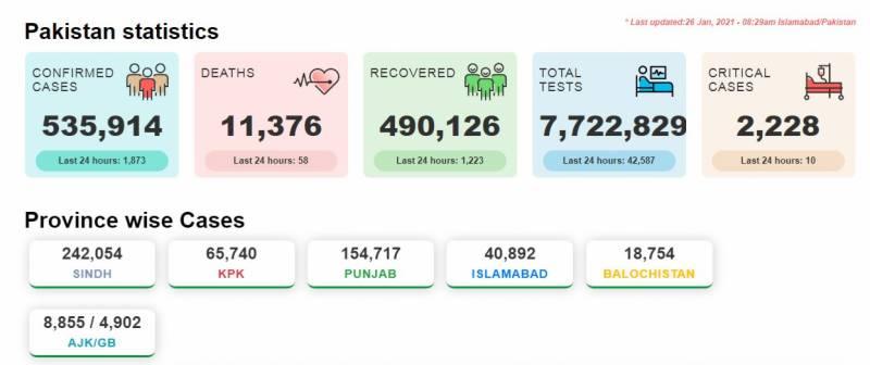 پاکستان :کورونا سے اموات کا سلسلہ تھم نہ سکا، مزید 58 افراد جاں بحق، 1873 نئے مریض