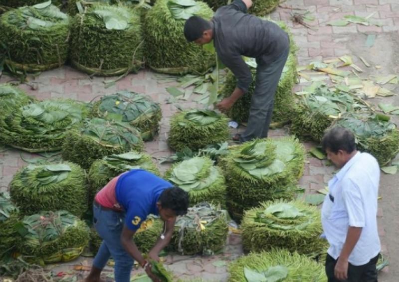 بھارتی ریاست تریپورہ میں لوگ پان کے پتے فروخت کررہے ہیں