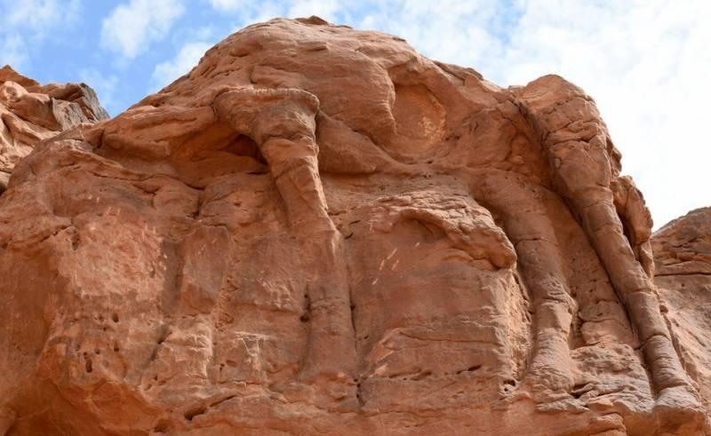 سعودی عرب میں چٹانوں پر اونٹوں کے ہزاروں سال پرانے نقوش دریافت