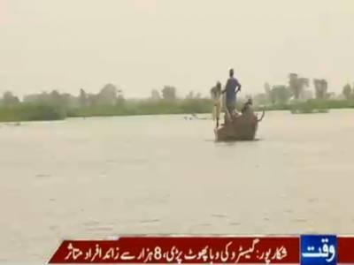 سندھ کےضلع شکارپور میں گیسٹرو کی وباء پھوٹنے سے آٹھ ہزار سے زائد افراد متاثر ہوئے ہیں، مخلتف علاقوں میںسیلابی پانیمیں محصور افراد سانپ کے کاٹنے سے مرنے لگے