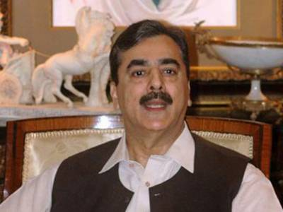 وزیراعظم سید یوسف رضا گیلانی نے پی آئی اے کے ملازمین کے مسئلے کے حل کے لیے چوہدری احمد مختاراور قمر زمان کائرہ پر مشتمل نئی دو رکنی کمیٹی تشکیل دی ہے ۔