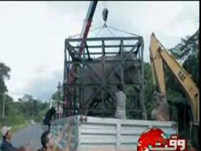 کمبوڈیا میں ایک سال تک فصلوں کو نقصان پہنچانے اور دیہاتیوں کی دوڑیں لگوانے والا ہاتھی گرفتار کرلیاگیا۔