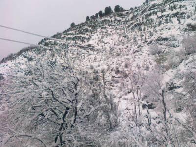 کئی شہروں میں جاتی سردی کا غم بادلوں کو بھی رلا گیا، کوئٹہ،زیارت اور چمن سمیت بلوچستان کے کئی علاقوں میں برفباری نے رنگ جمادیا.