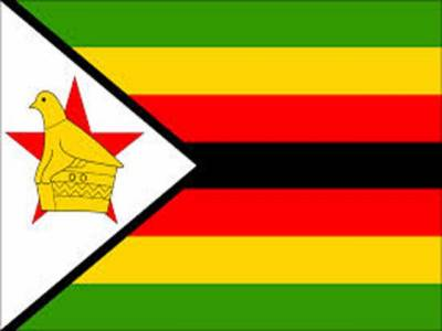 زمبابوے کے آف سپن بالر میلکم والر کا بالنگ ایکشن بھی مشکوک قرار دے دیا گیا والر کے بالنگ ایکشن کا اکیس روز میں جائزہ لیا جائے گا