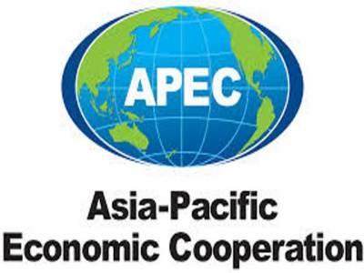 چین کے دارالحکومت بیجنگ میں ایشیا پیسیفک اکنامک کارپوریشن فورم کا اجلاس جاری ہےیہ ایپک ہےکیا اور اس کے مقاصد کیا ہیں انتے ہیں اس رپورٹ میں