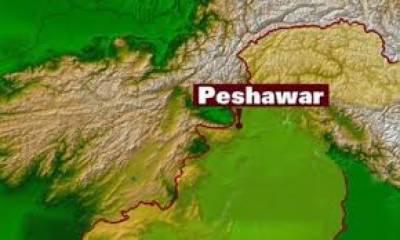 پشاورمیں پولیس اور سکیورٹی فورسز نےورسک روڈ پرگرینڈ سرچ آپریشن کے دوران متعدد مشتبہ افراد کو حراست میں لے لیا،ادھر مہمند ایجنسی کی تحصیل یکہ غنڈ میں پانچ لاشیں برآمد ہوئی ہیں