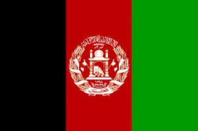 افغان خفیہ ادارے کے سربراہ نے دعویٰ کیا ہے کہ ملا عمر زندہ اور پاکستان میں ہے، دوسری جانب نیٹو فوج کے انخلا پر طالبان نے اتحادی فوج کا مذاق اڑنا شروع کردیا، اور انہیں بگھوڑے قرار دے دیا،ایک حملے کے دوران چار فوجیوں کو ہلاک کردیا گیا،