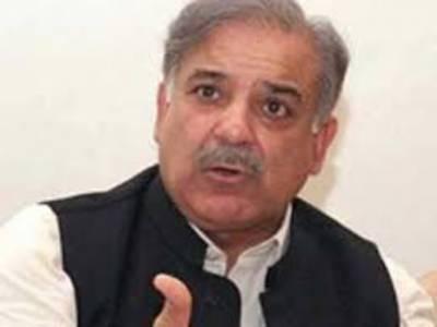 وزیراعلیٰ پنجاب شہبازشریف نے کہا ہے کہ نوجوانوں کو روزگار فراہم کرنا ایک بڑا چیلنج ہےدہشتگردی کے خاتمے کے بغیر ملک آگے نہیں بڑھ سکتا