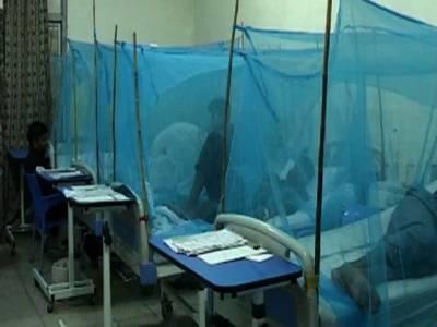 ڈینگی پھر بے قابو، راولپںڈی میں مزید 97نئےکیسز، مریضوں کی تعداد1200سےبڑھ گئی؛ کراچی میں روزانہ 100 کے قریب مریض رپورٹ ہونے لگے