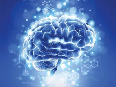 موٹاپے کی وجہ سے دماغ 10 سال پہلے بوڑھا ہوجاتا ہے: ماہرین