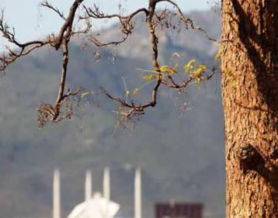ملک کے زیادہ تر علاقوں میں آئندہ چوبیس گھنٹوں کے دوران موسم خشک رہنے کی توقع ہے