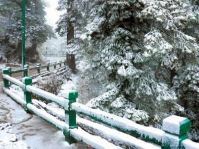 آئندہ چوبیس گھنٹوں کے دوران ملک کے مختلف علاقوں میں تیز بارش کا امکان،پہاڑوں پر برفباری جاری رہے گی:محکمہ موسمیات