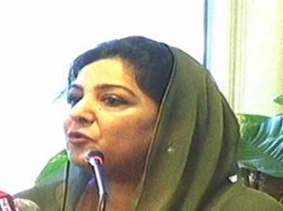 صحافت ہو یا کوئی اور پیشہ پاکستان کی روایات کے منافی کام نہیں ہوسکتا: انوشہ رحمان