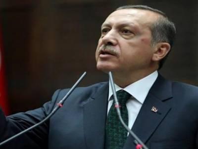 رجب طیب اردگان نے جرمنی کی حکمران جماعتوں کو ترکی دشمن قرار دے دیا