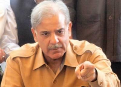 پاکستان مسلم لیگ(ن)کا دور حکومت تعمیر وترقی کے حوالے سے تاریخ ساز ہے: شہبازشریف