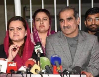 شریف خاندان کو ناکردہ گناہوں کی سزا مل رہی ہے:مسلم لیگ (ن)