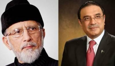 زرداری اور طاہر القادر ی کے درمیان ٹیلیفونک رابطہ,اہم سیاسی امور پر تبادلہ خیال