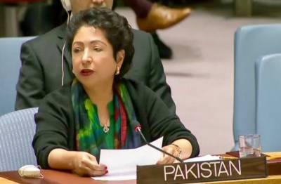 پاکستان کا اقوام متحدہ سے مبصرین کی تعداد بڑھانے کا مطالبہ