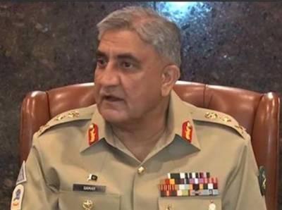 پاکستان نے اپنے علاقوں سے دہشت گردوں کی پناہ گاہیں ختم کردی ہیں :آرمی چیف جنرل قمرجاوید باجوہ