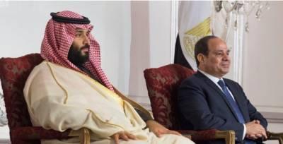 مصر اور سعودی عرب میں سرمایہ کاری، ماحولیات سمیت 4 معاہدوں پر دستخط