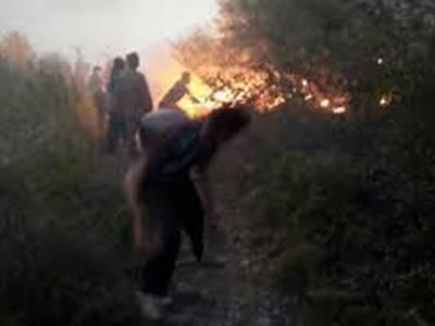 مارگلہ کے جنگلات میں لگی آگ پر قابو نہ پایا جاسکا،پاک فوج معاونت کیلئے پہنچ گئی