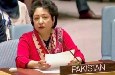 پاکستان بحرانی کیفیت سے نکل کرمستحکم معیشت میں داخل,2006کے بعددہشت گردی کے واقعات میں انتہائی کمی آچکی ہے:ملیحہ لودھی