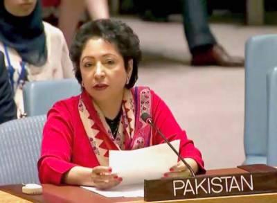 پاکستان کادہشتگردی کے خاتمے کی حکمت عملی وضع کرنے کی ضرورت پر زور