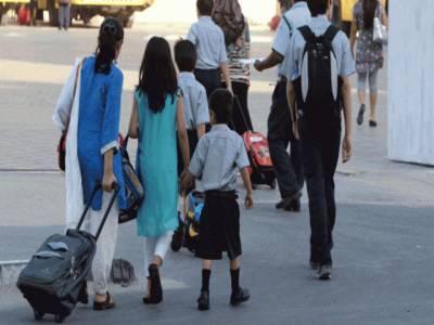 محکمہ تعلیم پنجاب کا صوبہ بھر کے سرکاری اور نجی سکولوں میں 17 مئی سے گرمیوں کی تعطیلات کا اعلان