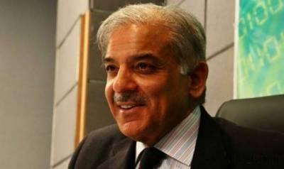 شہباز شریف نے ڈسٹرکٹ ہسپتال کی تعمیر و توسیع منصوبے کا افتتاح کردیا