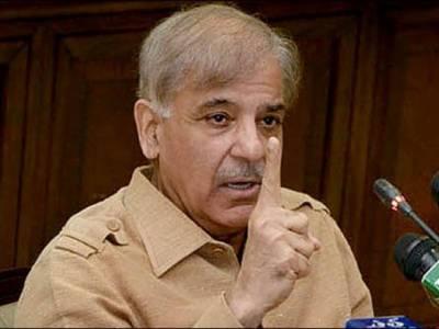 ووٹ کی طاقت سے زرداری نیازی کی سیاست کو دفن کر دیں گے: شہباز شریف