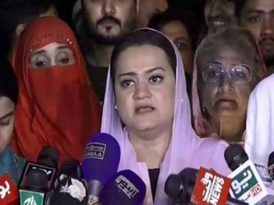 مسلم لیگ ن ، ایم کیوایم پاکستان اوربی این پی کا عام انتخابات میں دھاندلی کا الزام ، انتخابی نتائج پر تحفظات کا اظہار
