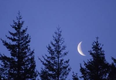 عیدالاضحی 22 اگست کوہونے کا امکان ہے:محکمہ موسمیات