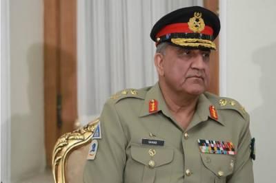 جان مکین پاکستان کے اچھے دوست تھے:آرمی چیف جنرل قمر جاوید باجوہ