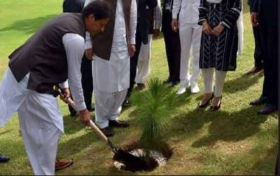وزیراعظم عمران خان نے گرین پاکستان مہم کا آغاز کر دیا