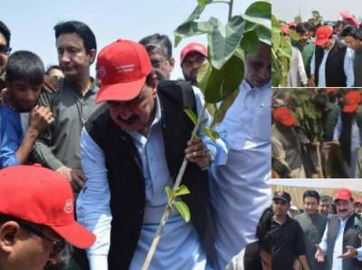 موسمیاتی تغیر حکومت کو درپیش بڑےمسائل میں شامل ہے:شیخ رشید