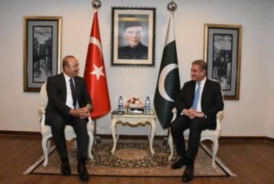 ترکی اور پاکستان کا تعلق صرف حکومتوں تک محدود نہیں،ہمارے دیرینہ، برادرانہ اور مثالی تعلقات ہیں:شاہ محمود قریشی