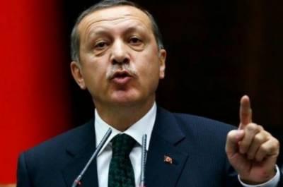 دنیامیں کوئی بھی ملک سیاسی و معاشی اعتبار سے محفوظ نہیں:ترک صدراردوان