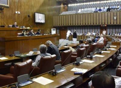 اپوزیشن کا وزیر اطلاعات کیخلاف سینیٹ میں داخلے پر پابندی کا مطالبہ