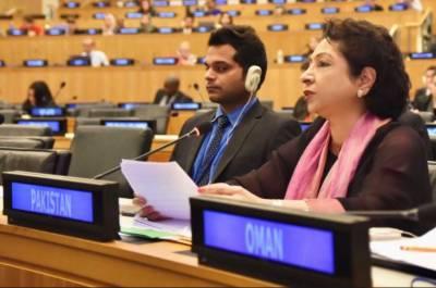 کرپشن کا خاتمہ،احتساب اور اثاثوں کی واپسی پاکستان کی نئی حکومت کا بنیادی ایجنڈا ہے:ملیحہ لودھی