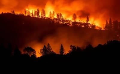 امریکہ:کیلیفورنیا میں خوفناک آتشزدگی 42جانیں نگل گئی