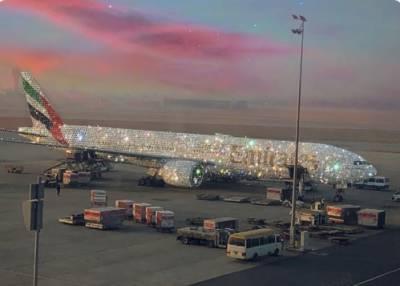 ''ہیرے جڑے'' طیارے کی سوشل میڈیا پر دھوم