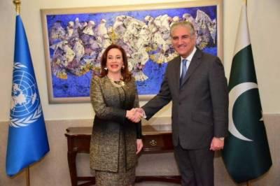 اقوام متحدہ کی صدر ماریہ فرنینڈا کی شاہ محمود قریشی سے ملاقات