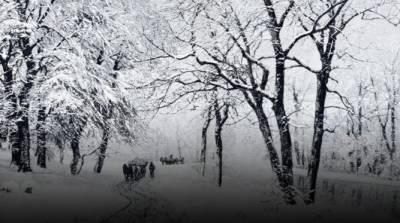 امریکا میں ریکارڈ توڑ سردی,ہلاکتوں کی تعداد 21 ہوگئی