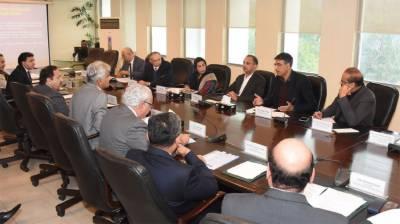 پاکستان میں گاڑیوں کے شعبے کو فروغ دینے کے وسیع امکانات ہیں:وزیر خزانہ