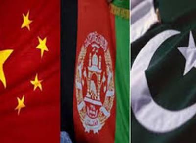 پاک افغان سرحدی گزرگاہوں پر چین جدید استقبالی مراکز تعمیر کرے گا