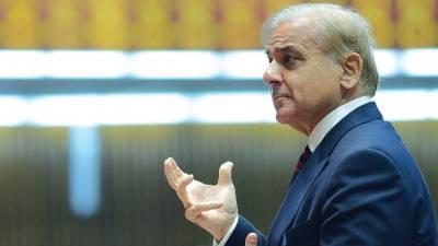 حکومت پٹرول اورڈیزل کی قیمتوں میں ہوشربا اضافہ واپس لے:شہباز شریف