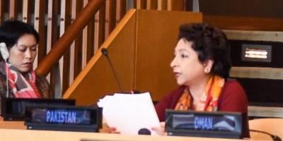 کشمیر میں وعدے پورے نہ ہونا سلامتی کونسل پرسوالیہ نشان ہے:ملیحہ لودھی